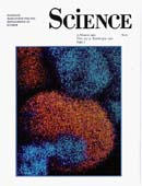 Science Cover 1990